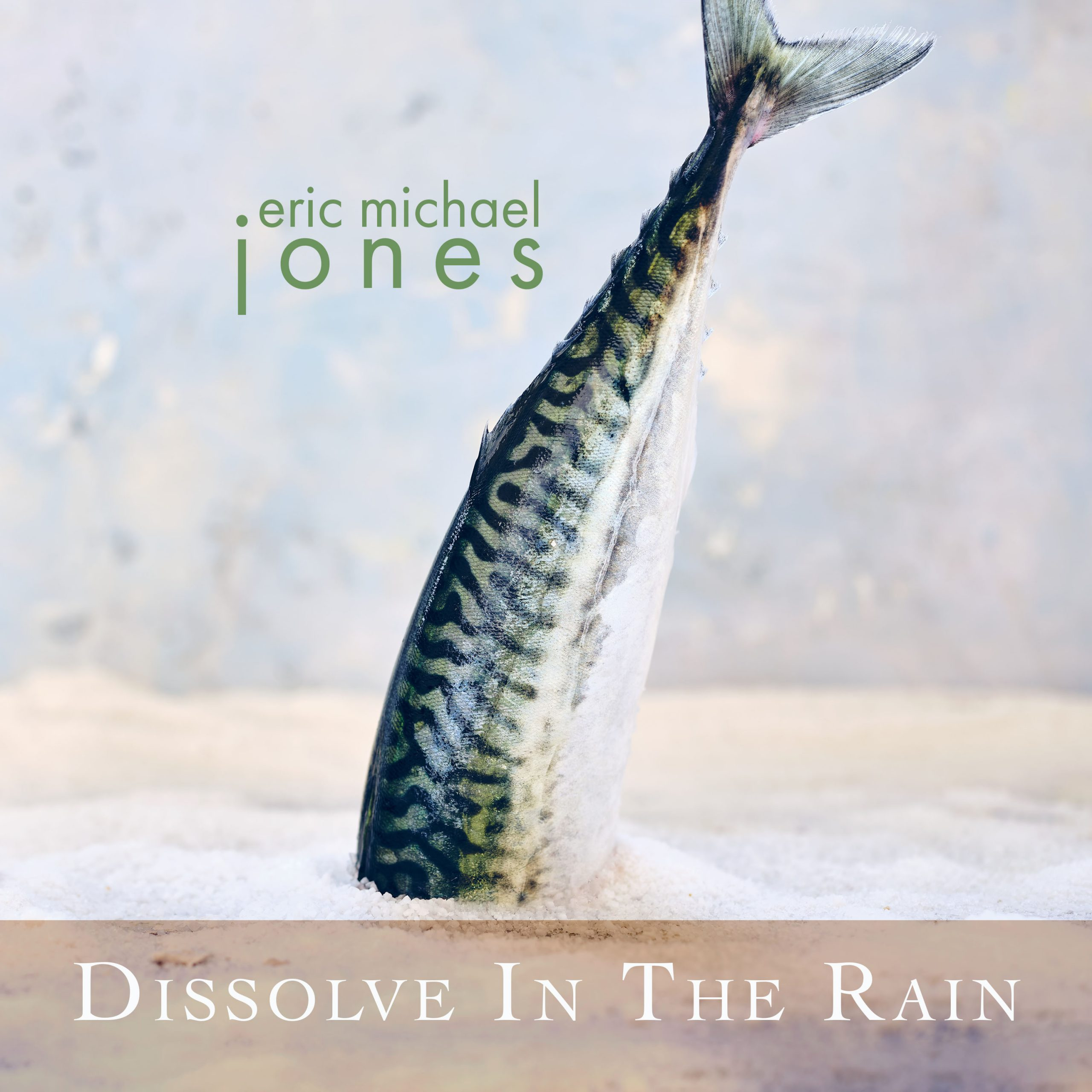 Cover art for Dissolve In The Rain, showing a fish with it's head buried in ice